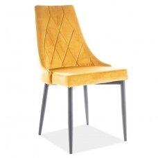 Kėdė KED2791