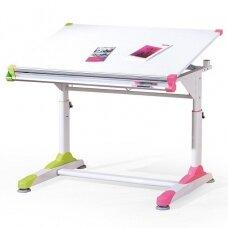 Rašomasis stalas H5290