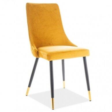 Kėdė KED2785 5